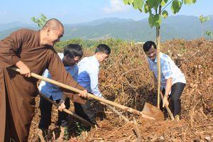 Điện Biên: Trồng trên 2.000 cây Ban tại đồi Độc lập