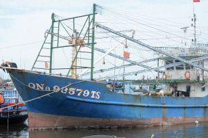 Quảng Nam: Tổ chức lại nghề cá để phát triển bền vững