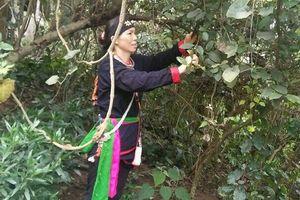Kỳ 8: Chuyện cảm động về danh y dòng họ lâu đời nhất Việt Nam giúp người mẹ sắp tàn phế thoát nạn