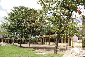 CĐ Trường Tiểu học và THCS Đô Lương chăm lo tốt cho nhà giáo, người lao động