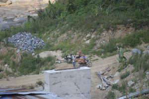 Bình Định: Rộ nạn lâm tặc tấn công kiểm lâm để tẩu tán tang vật