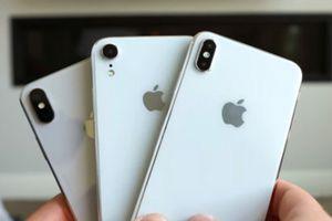 Chân dung phụ kiện đi kèm iPhone Xs xuất hiện, người dùng ngỡ ngàng