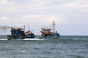 Hàn Quốc và Việt Nam tăng trao đổi kinh nghiệm quản lý ngư nghiệp