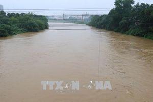 Khuyến cáo người dân thận trọng khi sử dụng nước sông Thao phục vụ sinh hoạt, sản xuất