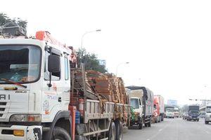 Gần 20 xe container, xe tải ngang nhiên đỗ dưới đường cấm để....tài xế ăn cơm