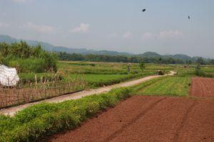 Yên Bái: Người dân cần cân nhắc khi sử dụng nước sông Thao