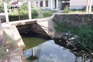 Thừa Thiên Huế: Hói Tre ô nhiễm trầm trọng, dân 'kêu trời'