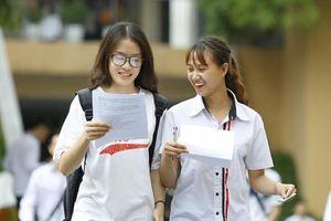 TPHCM: Giáo viên không kiểm tra bài liên tục, tránh gây áp lực cho học sinh