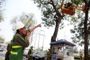 Hà Nội chủ động ứng phó bão 'kép' trên Biển Đông