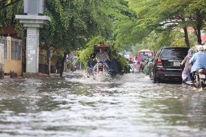 26.000 ha đất trồng lúa thành đất dịch vụ: Sài Gòn có thành công viên nước?