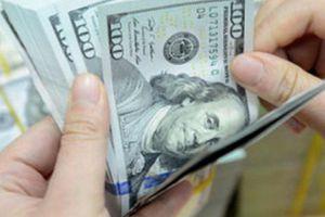 Có nên đầu tư USD?