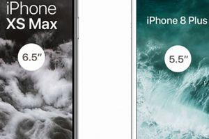 Ngắm loạt iPhone Xr, Xs và Xs Max đẹp long lanh trước giờ lên sóng