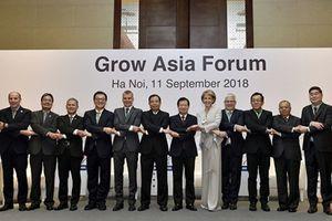 Diễn đàn Tăng trưởng châu Á: Hợp tác công - tư để phát triển nông nghiệp bền vững hơn