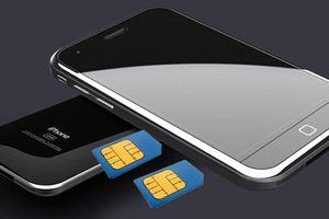 Rò rỉ khay SIM iPhone Xc xác nhận nhiều màu, hỗ trợ SIM kép
