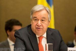 Liên hợp quốc cảnh báo nguy cơ khủng hoảng nhân đạo tại Syria