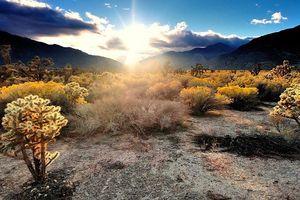10 sa mạc đẹp quyến rũ kỳ lạ