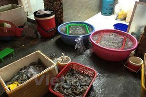 Cơ quan liên ngành bắt quả tang một cơ sở bơm tạp chất vào tôm