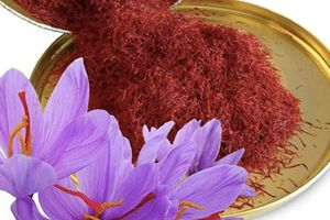 Tác dụng thực sự của nhụy hoa nghệ tây - thứ gia vị đắt hơn vàng ròng