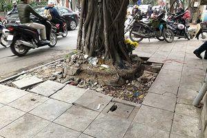 Hàng loạt sai phạm tại các dự án lát vỉa hè Hà Nội