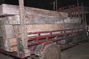Video clip Công an truy bắt vụ vận chuyển gỗ quy mô lớn ở Đắk Lắk