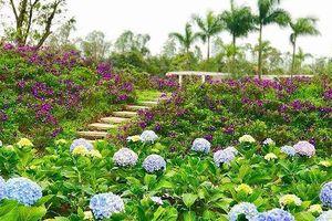 Khai trương công viên hoa 22 ha ngay tại trung tâm Hà Nội