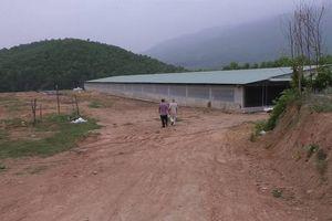 Đại Lộc (Quảng Nam): Chính quyền xử lý kiểu 'giương cao đánh khẽ'(!)