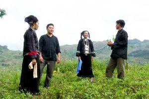 Nét độc đáo trong trang phục truyền thống của phụ nữ Nùng Dín