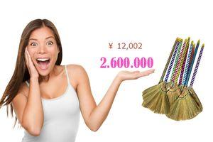 Giật mình chổi chít Việt Nam bán trên Amazon Nhật giá 2,6 triệu đồng