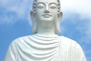 Tượng Phật ở dự án tâm linh do ông Trần Bắc Hà kêu gọi có gì đặc biệt?
