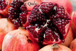 Cách phân biệt 9 loại trái cây Trung Quốc thường bị đánh lừa là hàng Việt
