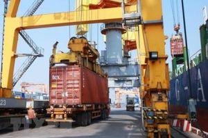 Chi nhánh Cảng Tân Vũ đưa thêm 2 cần trục giàn tầm với 14 hàng container vào hoạt động