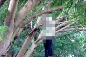 Phát hiện nam thanh niên tử vong tư thế treo cổ trong rừng