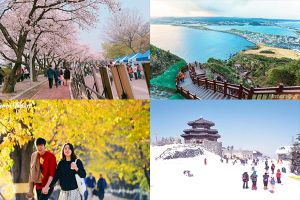 Đi du lịch Hàn Quốc vào tháng nào mới đẹp, check-in siêu 'đỉnh'?