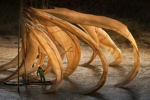 'Đẹp nín thở' với những tác phẩm đạt giải cuộc thi ảnh lớn nhất thế giới