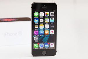 Không phải Trung Quốc mà Ấn Độ mới là nơi gia công iPhone SE 2