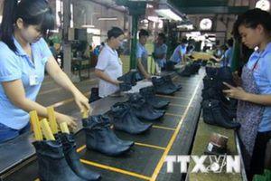 Ngành da giày thay đổi chiến lược để thích ứng