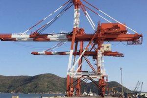 Cảng Quy Nhơn đưa vào vận hành hệ thống cẩu trục chuyên dụng trị giá 200 tỷ đồng