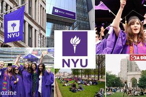 Tại sao học sinh Mỹ mơ ước vào Đại học New York hơn cả MIT?