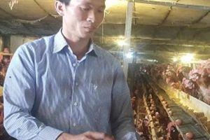 Bỏ phố về quê thuê 14ha đất, nuôi 40.000 gà, vịt, lãi ngót 4 tỷ/năm