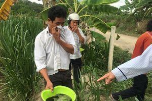 Dân chết mòn vì sự ô nhiễm môi trường khủng khiếp của trại heo Triệu Hải
