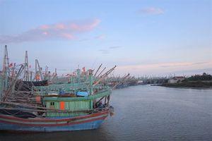 Tàu lạ đâm hai tàu cá trên biển Hoàng Mai khiến 7 người bị thương