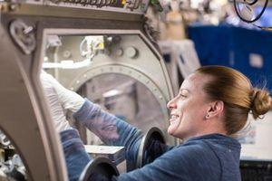 Tại sao NASA gửi tinh trùng lên trạm không gian?
