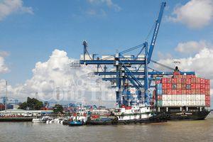Doanh nghiệp áp dụng số hóa trong logistics: Giảm chi phí, tăng cạnh tranh