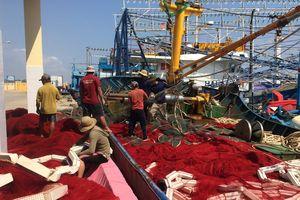 Phú Yên: Nhiều bất cập trong việc cho thuê mặt bằng tại Cảng cá Phú Lạc
