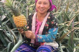 Thủ tướng đối thoại với nông dân: Nông dân cần gì nhất ở Chính phủ?
