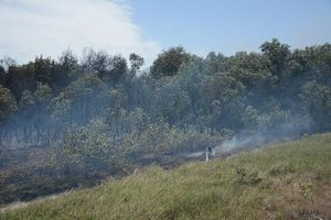 Điều tra vụ cháy Khu bảo tồn thiên nhiên Tà Kóu