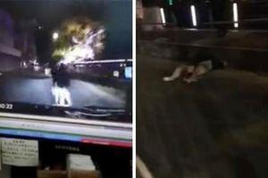 Vô tư 'mây mưa' giữa đường, đôi nam nữ bị ô tô tông tử vong tại chỗ
