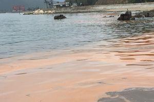 Quảng Bình xuất hiện 'Thủy triều đỏ'
