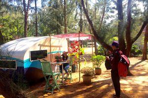 Zenna Pool Camp điểm cắm trại thu hút giới trẻ