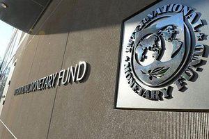 IMF kêu gọi hợp tác toàn cầu về tiền ảo để chống rửa tiền, trốn thuế và lừa đảo